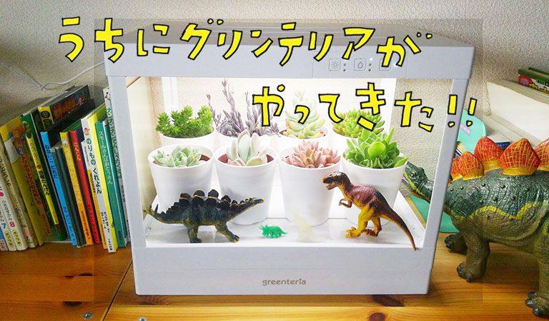 憧れの多肉植物を簡単に育てる方法! グリンテリアでもう枯らさない!