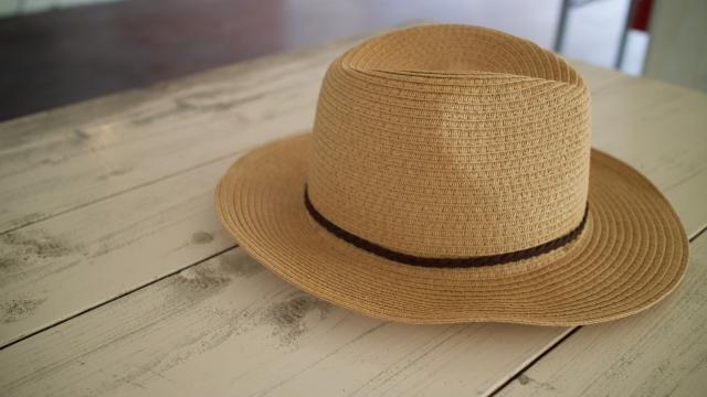 子どもに使う日焼け止めや虫よけアイテム…ママたちが気にするポイントは?