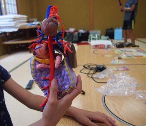 さらに、他の内臓との位置関係を知るために、小腸や大腸とドッキングさせます