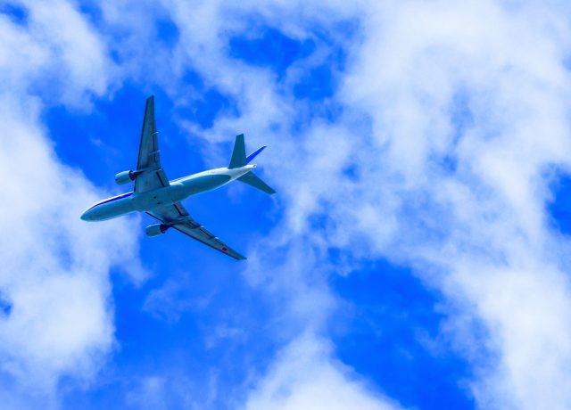 ママが行きたいリゾート♪ 沖縄と北海道ならどっち?