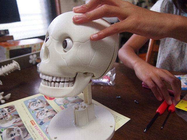 まずは後頭部のつけ位置を確認