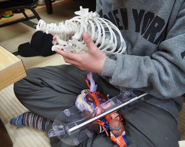上半身固定パーツから骨をとりはずして、