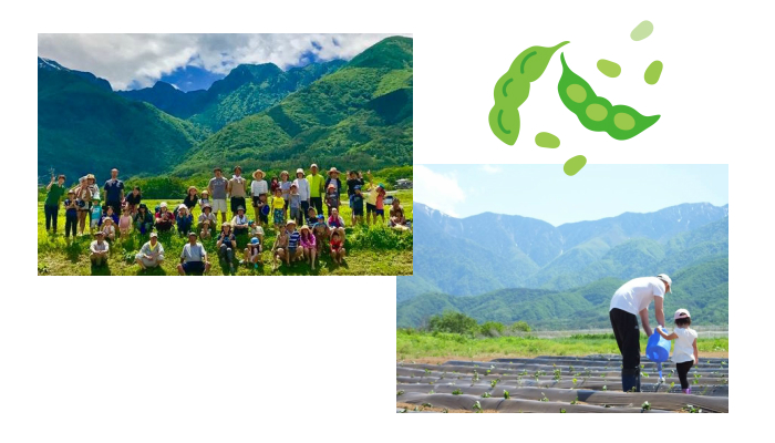 おでかけモニター募集! 「植to食project」枝豆収穫体験andずんだ白玉餅づくり