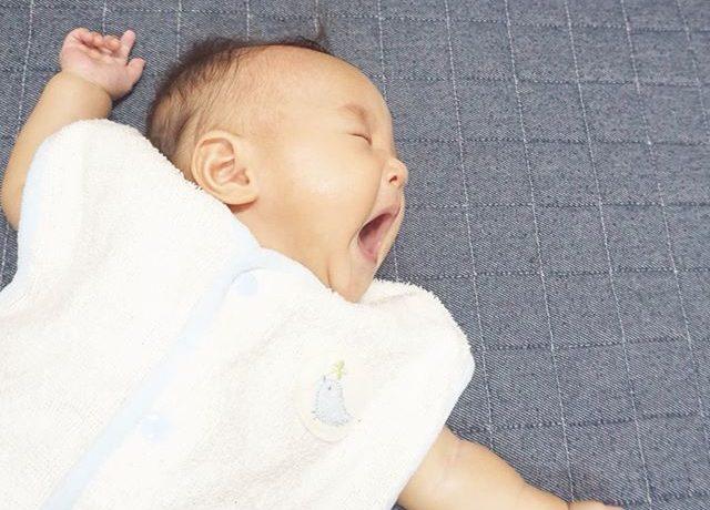 1年中使える!BabyGoose「快適2wayおねんねスリーパー」モニターママの口コミ!