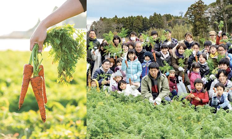 伊藤園オリジナルにんじん「朱衣」収穫祭のお出かけモニター募集!
