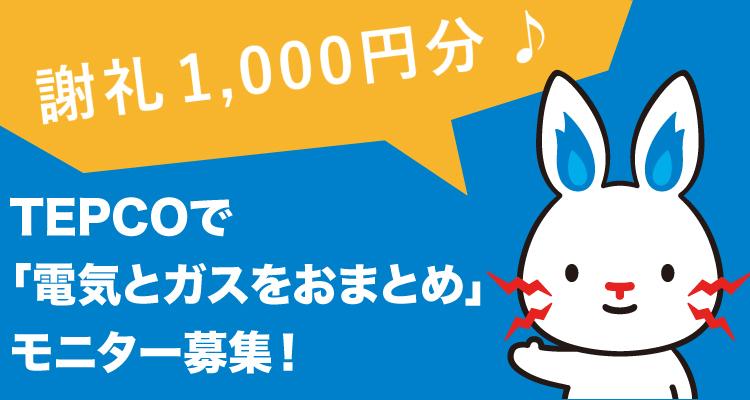 【謝礼1,000円分♪】TEPCOで「電気とガスをおまとめ」モニター募集!