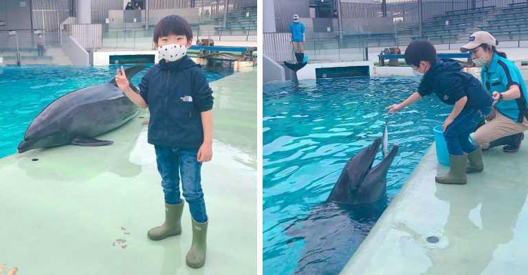 しながわ水族館と「イルカトレーナー体験」おでかけモニターの口コミ!